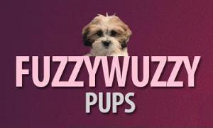 Fuzzy Wuzzy Pups Logo